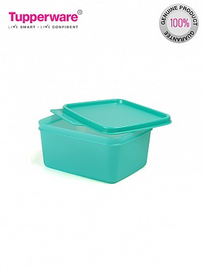 Tupperware Keep Tab Small 1Pc (153)@ Rs.181.00